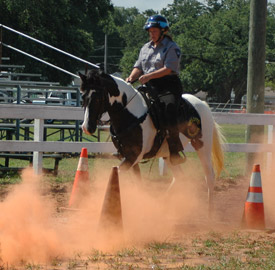 Mounted Instructor photo